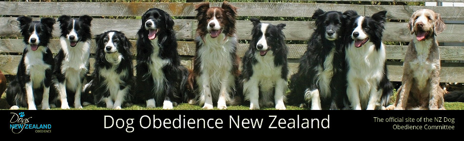 NZKC Dog Obedience